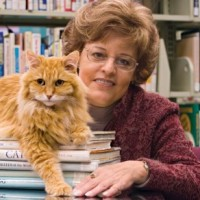 Bibliothécaire : un métier sexy ?